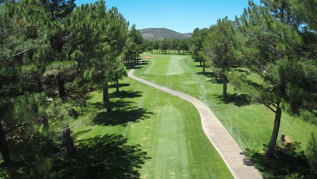 Arial view of greens